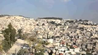 فرحة عارمة لحظة مشاهدة الصواريخ وهي تتساقط على القدس