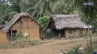 Lalehun - living in the bush (Sierra Leone)