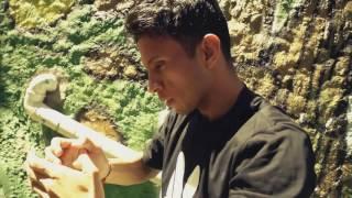 Mr. VIK - Brasil Tropical (Official Video) TETA