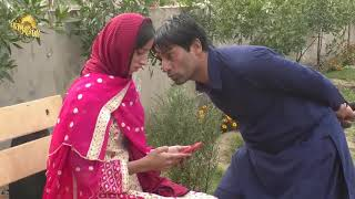 Riborting Latest Funny Video Free Download   jast funny