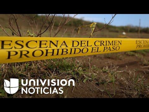 Encuentran más fosas en Veracruz tras el hallazgo de unos 250 cráneos
