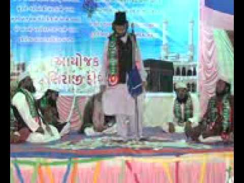 DILBAR SHAHI PAT 6
