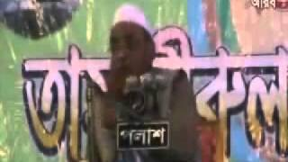 Deobandi explanation of Shirk by Hallaj - Sylheti Peer Nurul Islam Olipuri.flv