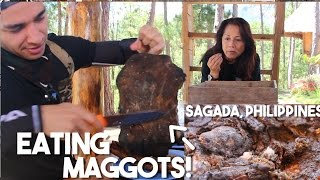 Exotic Foods of the Philippine Mountains (Sagada Food Trip)