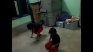 Amazing Dance Practice 13 year Old Two Girls | Bengali Song Man Majhi Re