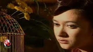 Nafa Urbach - Hatiku Bagai Disangkar Emas [KARAOKE]
