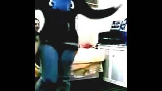 رقص دجى القط44