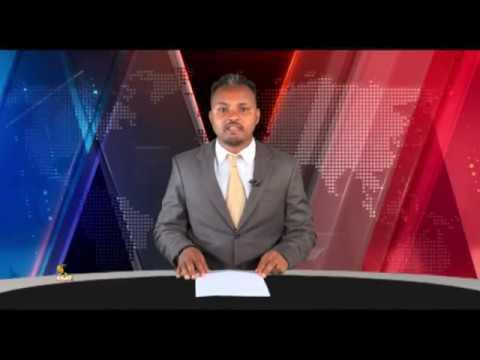 Xxx Mp4 ESAT Oduu Afaan Oromoo Roobii Nov 14 2018 3gp Sex