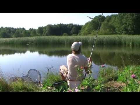 все о рыбалке-матчевая ловля
