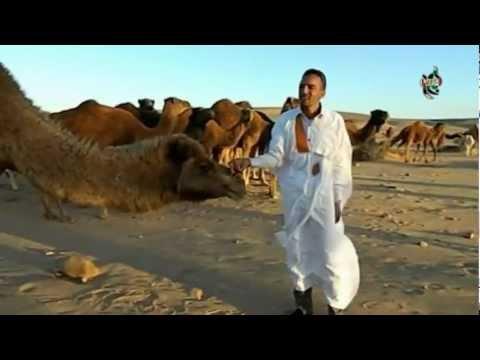 فرقة الشهيد المحفوظ علي بيبا في اغنية أحزان ترابي