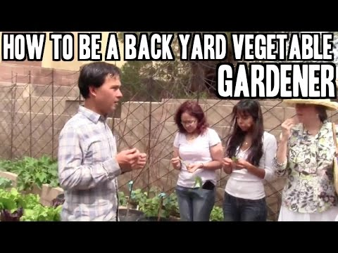 How to Be a Back Yard Vegetable Gardener to Grow Food