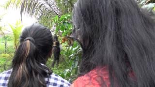 Natak sketch Nariyar Chor - Suriname, mijn thuisland? 2014
