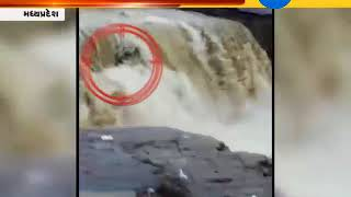 Shivpuri : 11 People Drowned in Waterfall at Sultangadh, 4 People Died : ZEE 24 KALAK