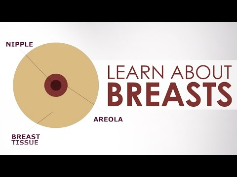 Learn about Breasts and Girls During Puberty