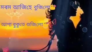 Tumar rani jibonr||vreegu kashyap||Assamese whatsapp status video||30sec