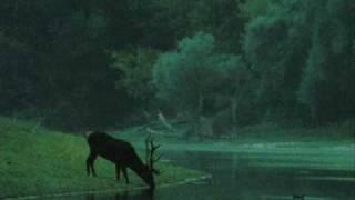 Zöld Erdőben / In Green Forest - Hungarian Folk Song