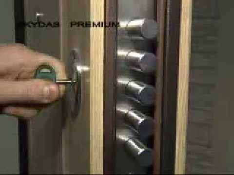 Бро� ирова� � ые двери SKYDAS Premium