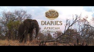 Chander Pahar Diaries | Ep 09 | African Elephants Part I | Dev | Kamaleswar Mukherjee | 2013