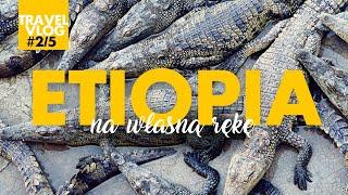 ETIOPIA na własną rękę - vlog (cz. 2/5). Skasowany bus do Arba Minch. Farma krokodyli