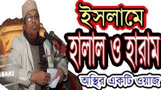 Mufti Kazi Ibrahim ইসলামে হালাল হারাম