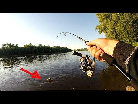 рыбалка на сома летом на реке