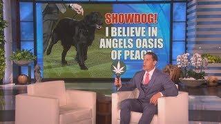 Digital Exclusive: John Cena and tWitch Play 'Marijuana Strain or Show Dog?'