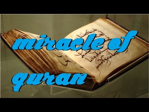Description of the human birth | MIRACLE | miracles of quran