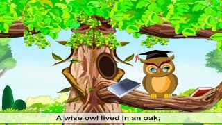 A Wise Old Owl  | English Rhymes For Children
