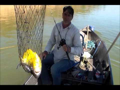 pesca no rio são francisco 2014