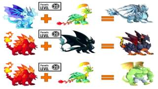 How To Breed All Dragons in Dragon City