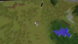 Isolated Dog - Victory isn