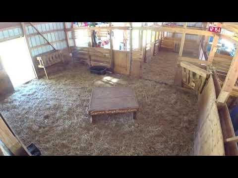 Xxx Mp4 Live Working Goat Barn Camera Baby Goats 3gp Sex