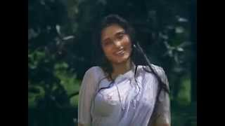 Rupa ganguli sexy wet saree song