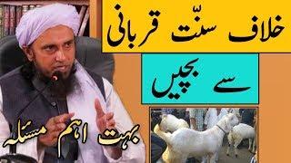 Khilaf e Sunnat Qurbani Se Bachein | Most Important Masla | Mufti Tariq Masood | Islamic Group