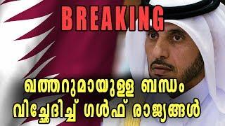 Four Arab Nations Cut Diplomatic Ties With Qatar | Oneindia Malayalam