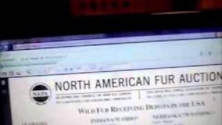 Shipping furs to NAFA