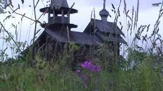 Russian north Kizhi 自然の中、ロシア、北