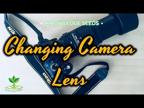 Nikon AF-S DX Nikkor 55-300mm - Unboxing