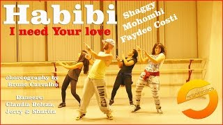 Habibi (I need Your love) - Shaggy Mohombi Faydee Costi