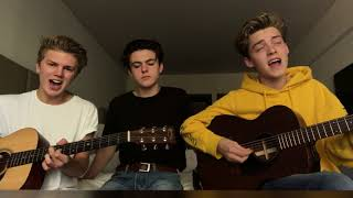 Too Much To Ask - Niall Horan (Cover)