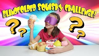 BLINDFOLDED SQUISHIES CHALLENGE!!! My Squishy Collection!