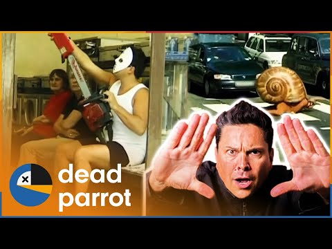 Xxx Mp4 Trigger Happy TV Best Of Series 2 3gp Sex
