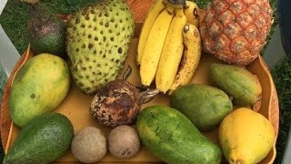 Soursop and Jamaican Tropical Fruit