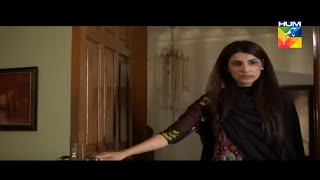 Saya e Dewar Bhi Nahi Full OST Video Song | Hum Tv
