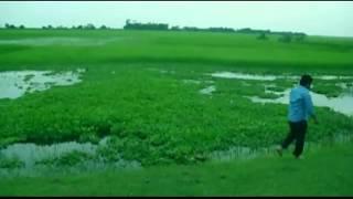 Ghuri Tumi Kar Akashe Uro Lutfor Hasan Editing by Shajada