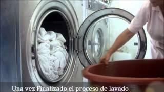 Capacitación en Procesos de Lavado  - Lavandería