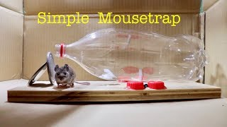 How to Make a ● Simple Catch and Release Coke Bottle Mousetrap ( that works ! )