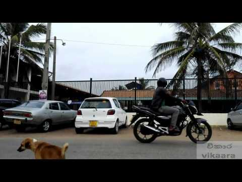 Sex in a car prank Sri Lankan version
