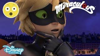 Miraculous Ladybug | Cat Noir Sees Marinette's Transformation?! 😱 | Disney Channel UK
