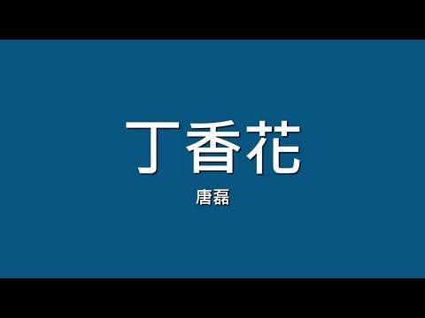 Xxx Mp4 唐磊 丁香花【歌詞】 3gp Sex